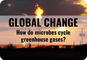 globalchange3
